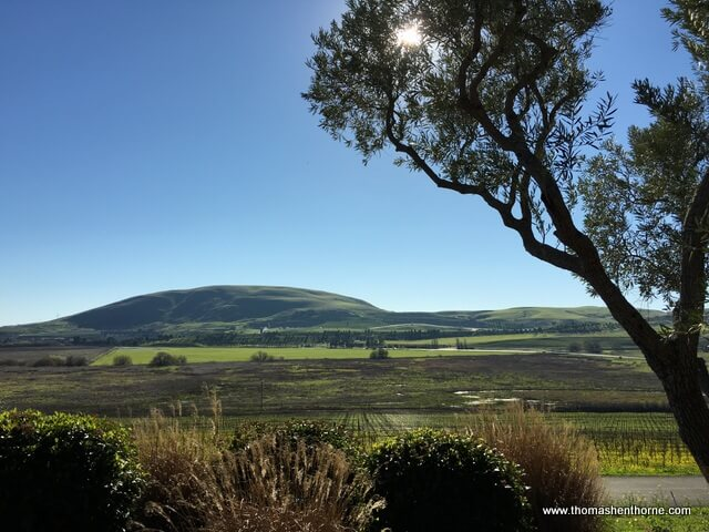 photo of the view from ram's gate valley and hills in background with blue sky and olive tree