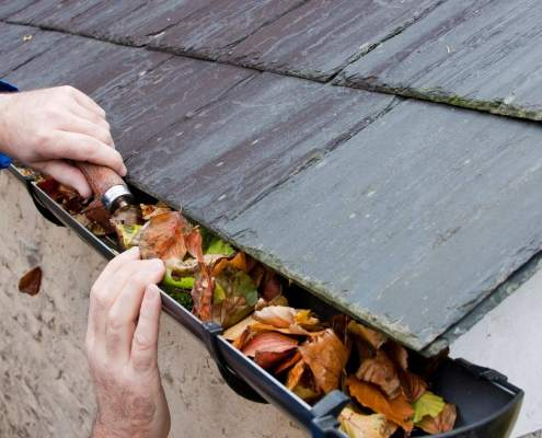 Leaves being cleaned from a gutter for Marin winter storm preparation guide article