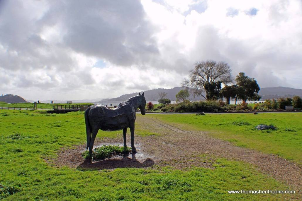 Sculpture of Blackie the Horse at Blackie's Pasture park in Tiburon, California