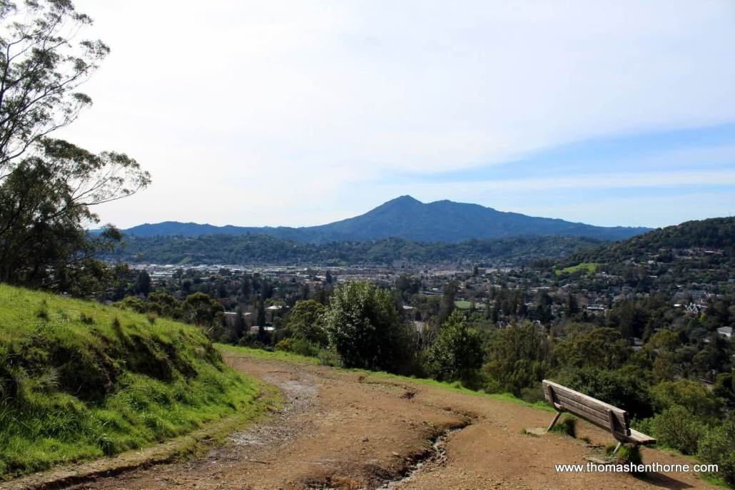 Bench on Gold Hill Fire Road Trail with Mt. Tamalpais in background
