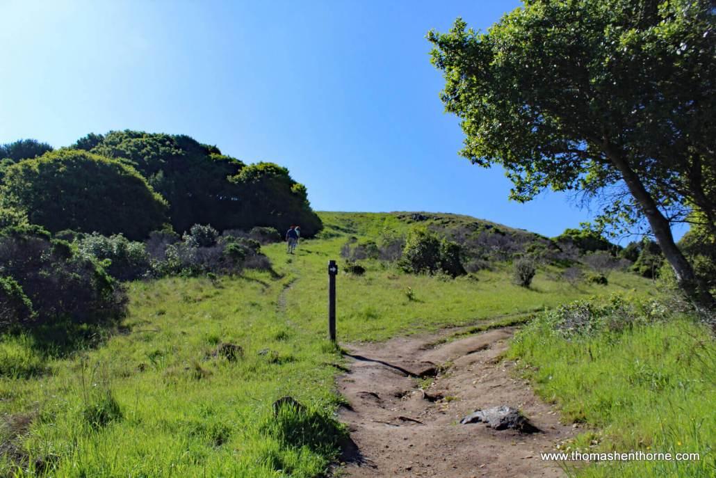 Ring Mountain Loop Trail