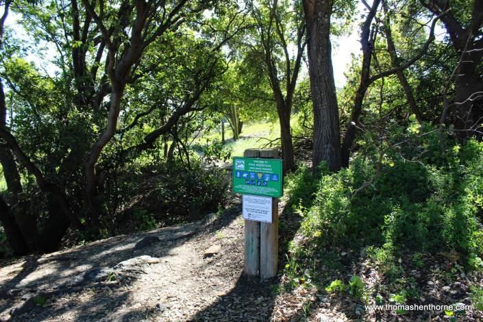 Trailhead at End of Westward Drive