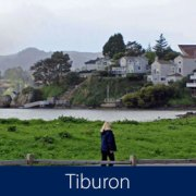Tiburon Homes for Sale