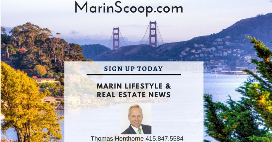 Marin Real Estate Newsletter V3