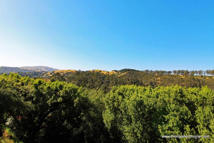 View from 4 Tilden Circle in San Rafael