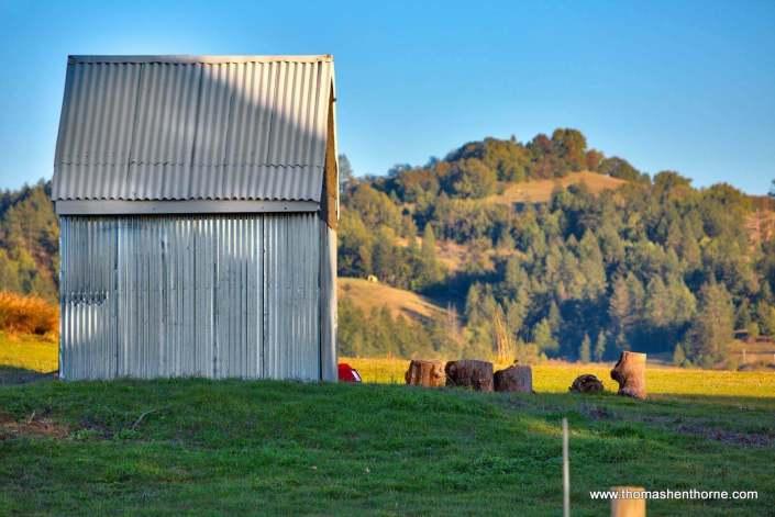 Metal corrugated shed