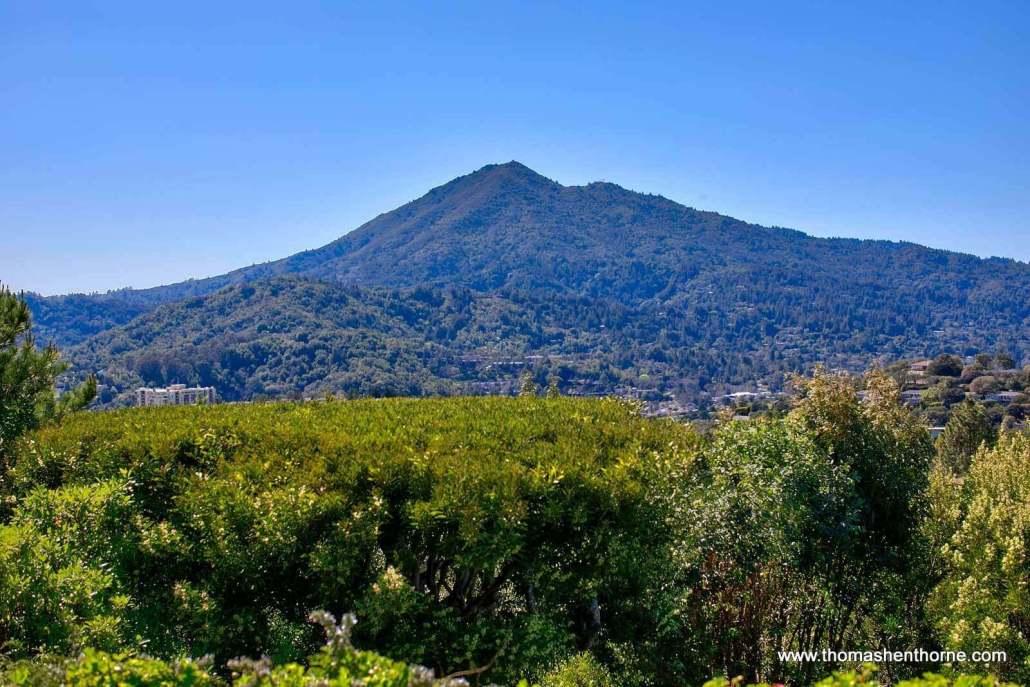 Mt. Tamalpais as seen from San Rafael