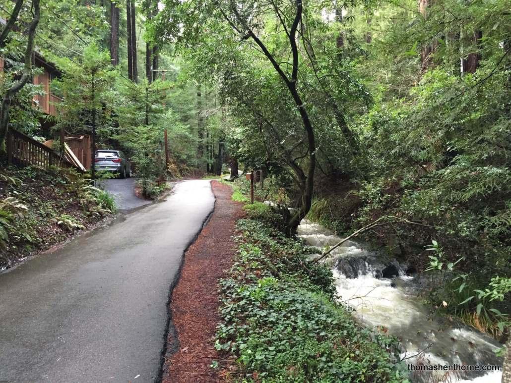 creek on cascade drive