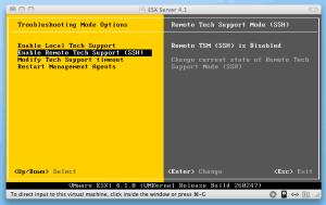 VMware ESXi 4.1 enable SSH