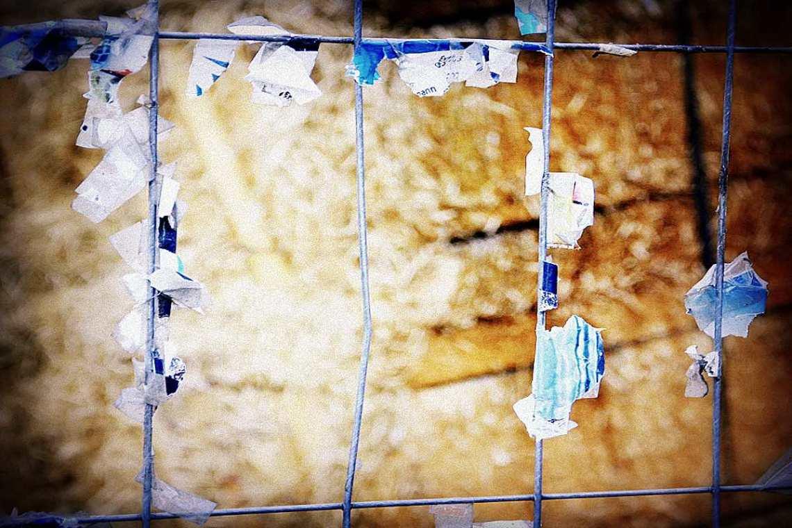 Zaun © Tom Rübenach
