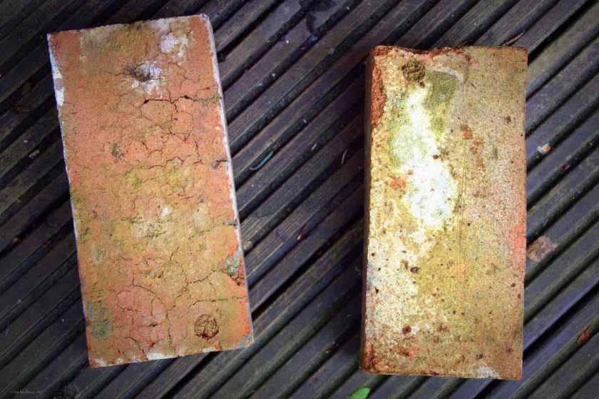 Zwei Zigelsteine liegen auf einem geriffelten Holzboden. Die Steine sind rotbraun, das Holz dunkelbraun. © Tom Rübenach