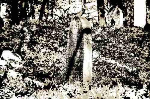 Verschwommener Blick auf Gräber des jüdischen Friedhofes in Leubsdorf am Rhein © Tom Rübenach