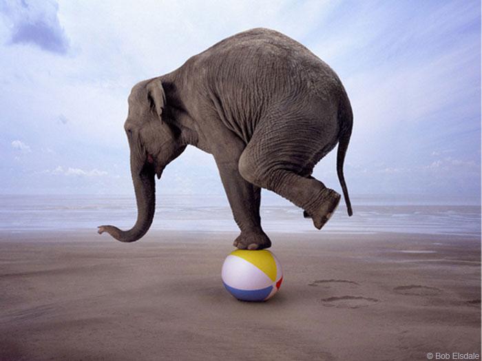 life is like a balancing act