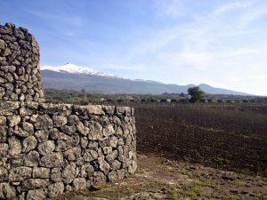 L'irrésistible irruption des vins de l'Etna