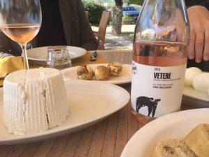 L'autre richesse de la Campanie : la mozarella. Près de Paestum la nouvelle cave San Salvatore 1988 non seulement produit des vins, notamment un rosé pimpant (et un mousseux brut) à base d'aglianico, mais entretient un troupeau de 450 bufflones.