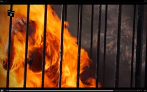Jordanian_pilot_not_burned.2