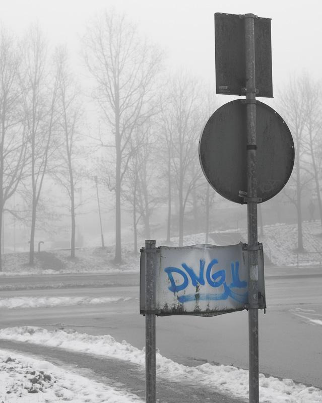 dng_1
