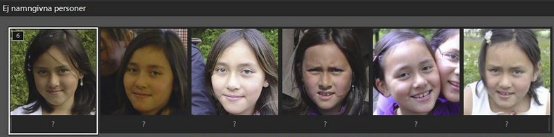 lightroom-6-ansiktsigenkänning-006.JPG