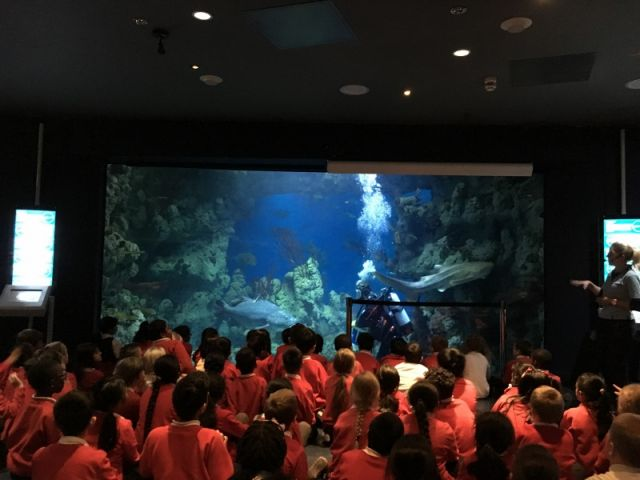 A VISIT TO THE DEEP
