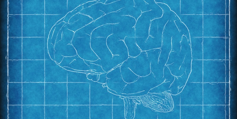 Neuroscience and Faith: In Whose Image?