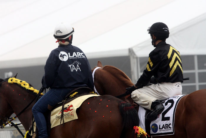 LARC taa jacket for 2018 sir barton stakes