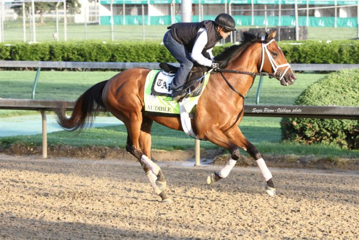 Audible gallops at Churchill Downs ahead of the Kentucky Derby