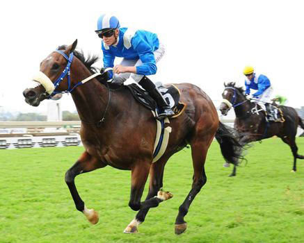 Full-Brothers Post Grade 1 Wins at TurffonteinFull ...