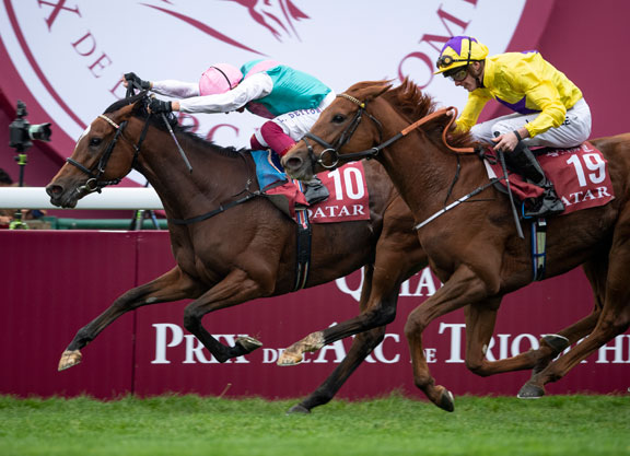 Enable Accelerate Headline Record 221 Breeders Cup Pre
