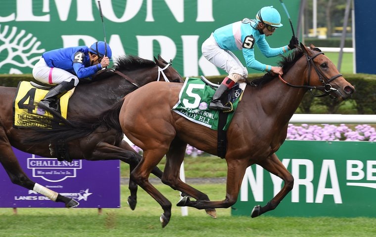 Stars Of The Breeders Cup Get Ready To Hail Miracle