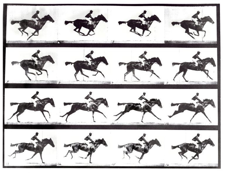 Eadweard Muybridge, the Father of Motion Pictures