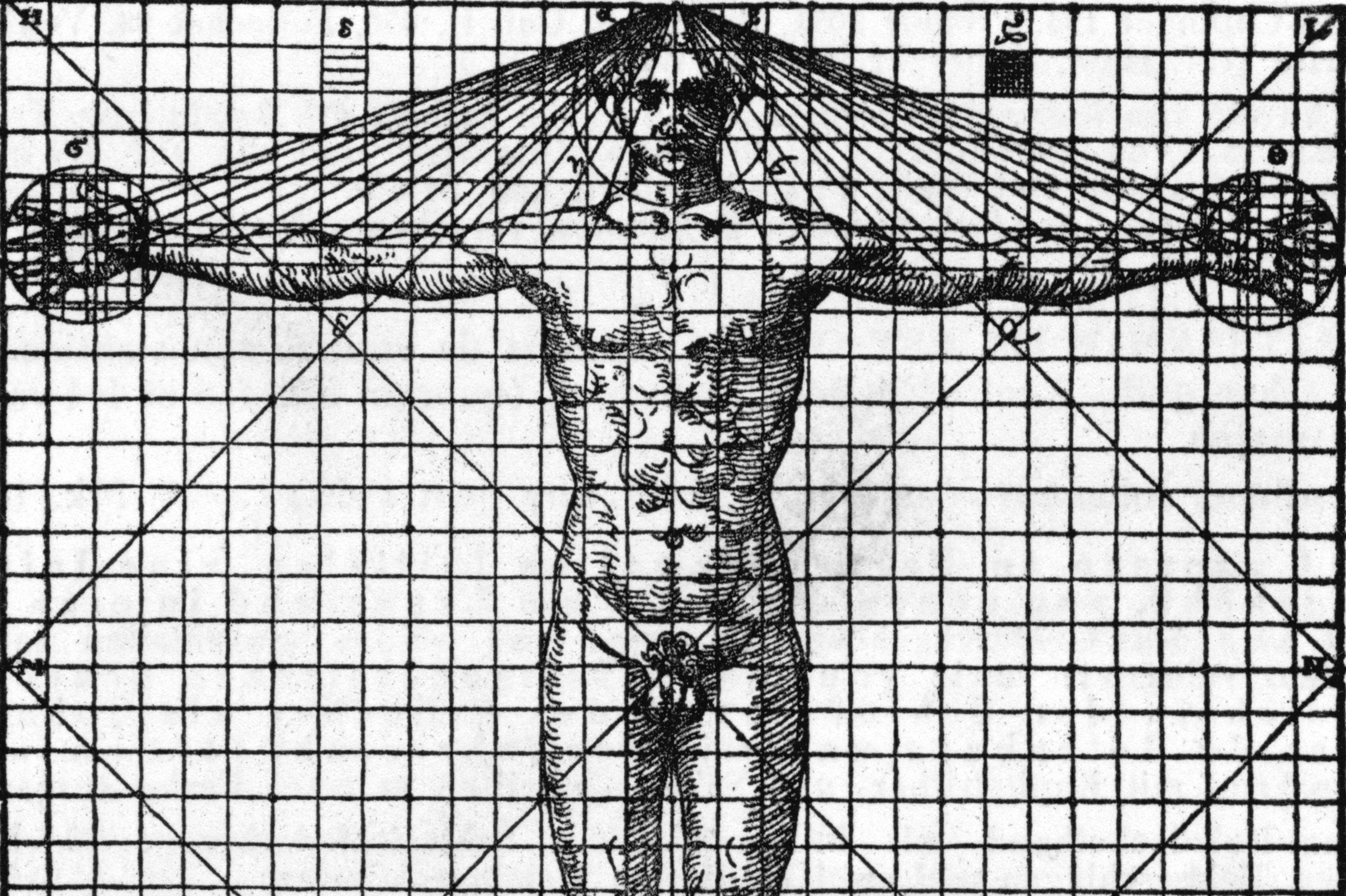 Symmetry And Proportion By Vitruvius And Da Vinci