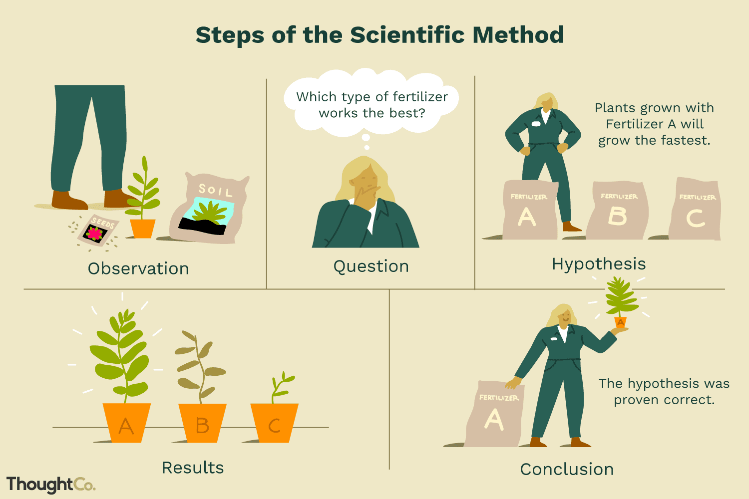 Scientific Method Definition And Examples