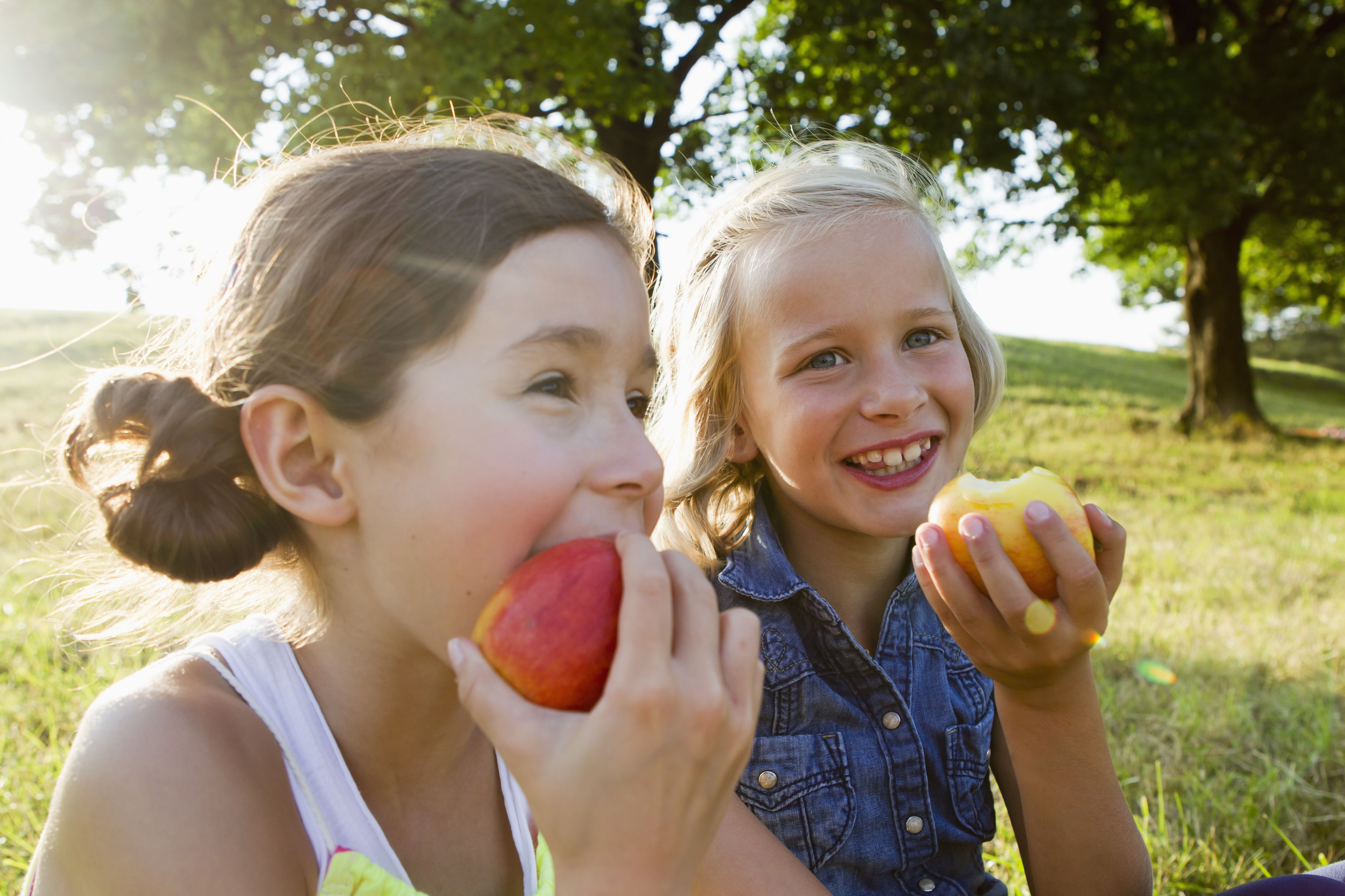 Health Safety And Nutrition Worksheets For Kids