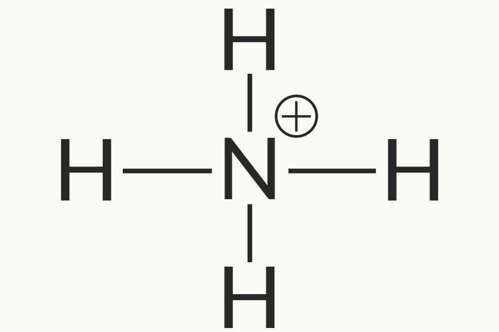 medium resolution of ammonium ion