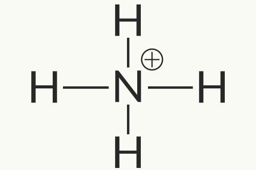 small resolution of ammonium ion