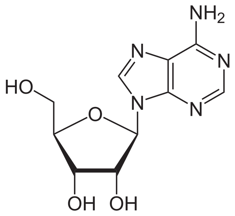 Glycosidic Bond Definition and Examples