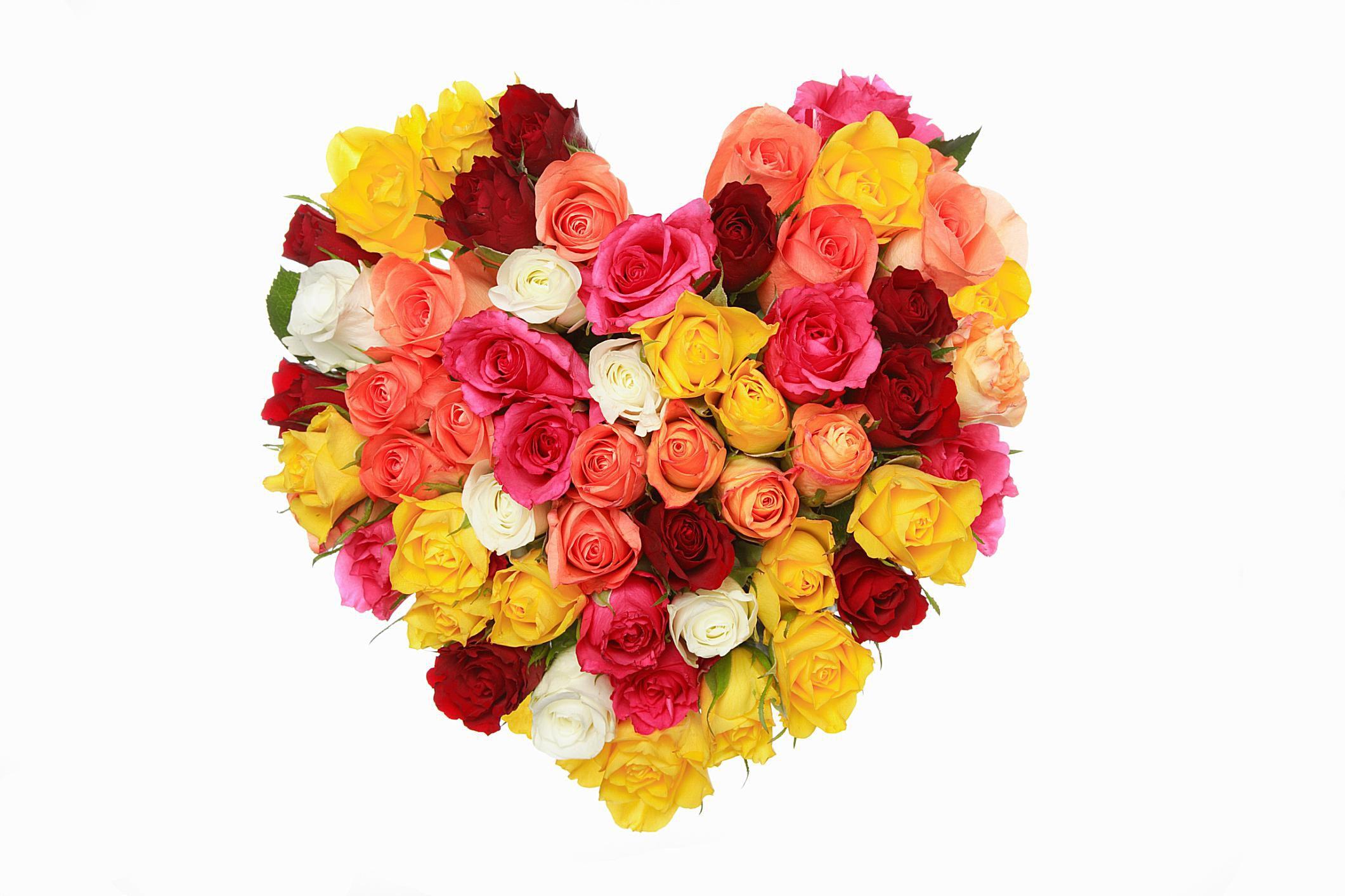 Sacred Roses The Spiritual Symbolism Of Roses