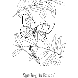 Free Printable Spring-Related Activity Worksheets