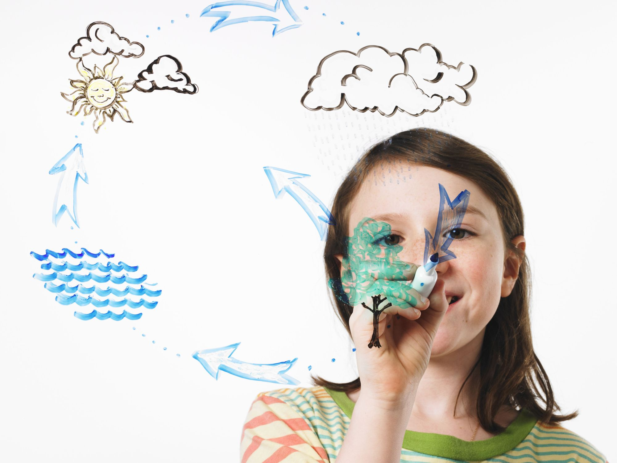 hight resolution of a young girl drawing the water evaporation cycle on a clear see through surface with a
