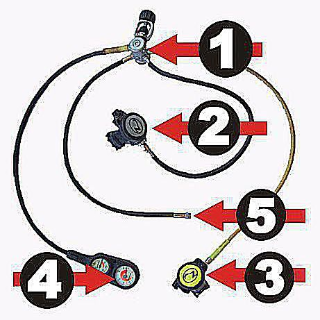 scuba gear diagram 7 pin trailer socket wiring description of diving regulator parts basics open water
