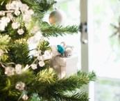 How To Preserve Christmas Tree Life