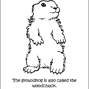 Groundhog Day Wordsearch, Crossword Puzzle, and More