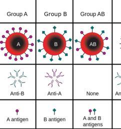 abo blood groups [ 1500 x 1000 Pixel ]