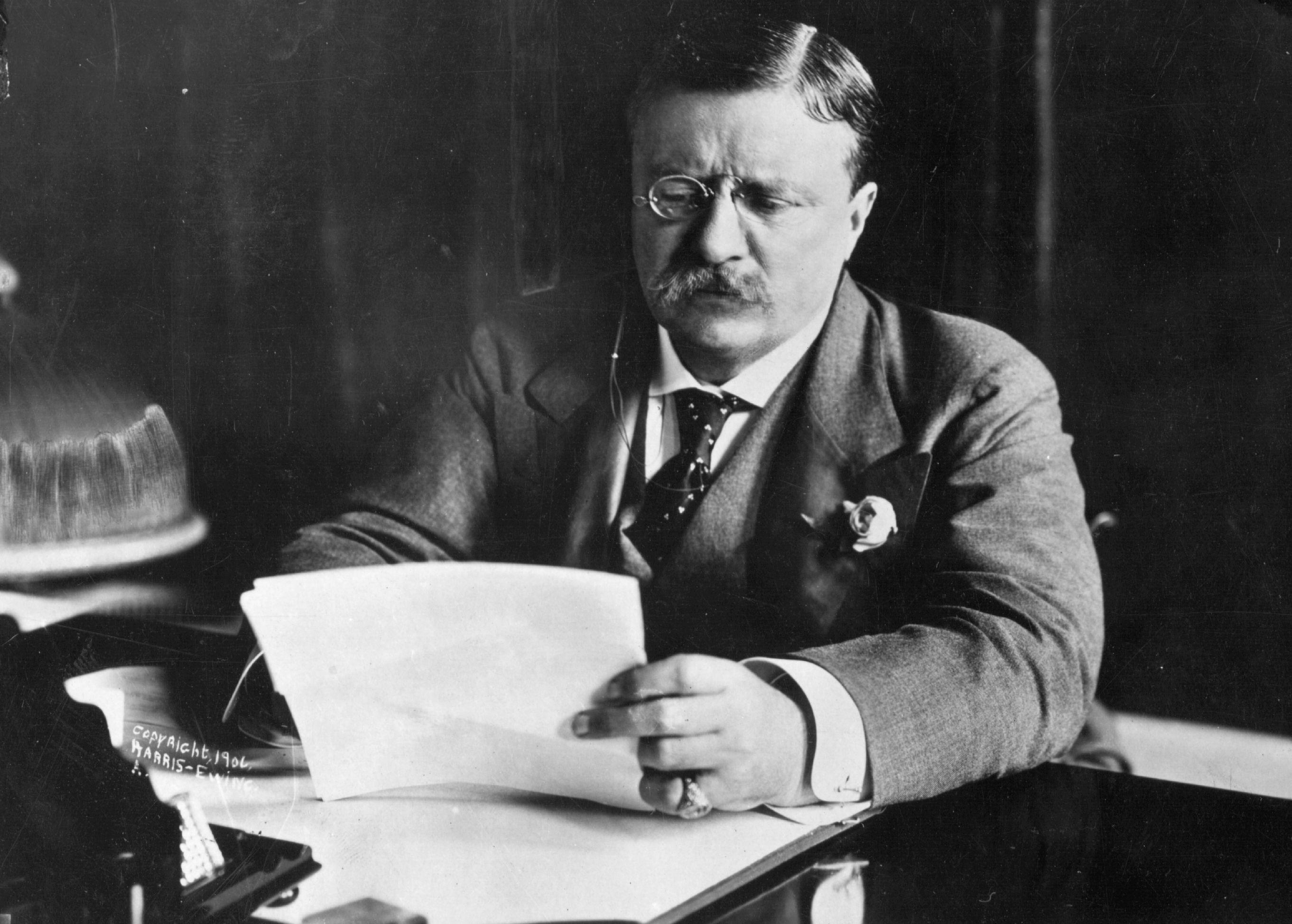 President Theodore Roosevelt Biography 26th President