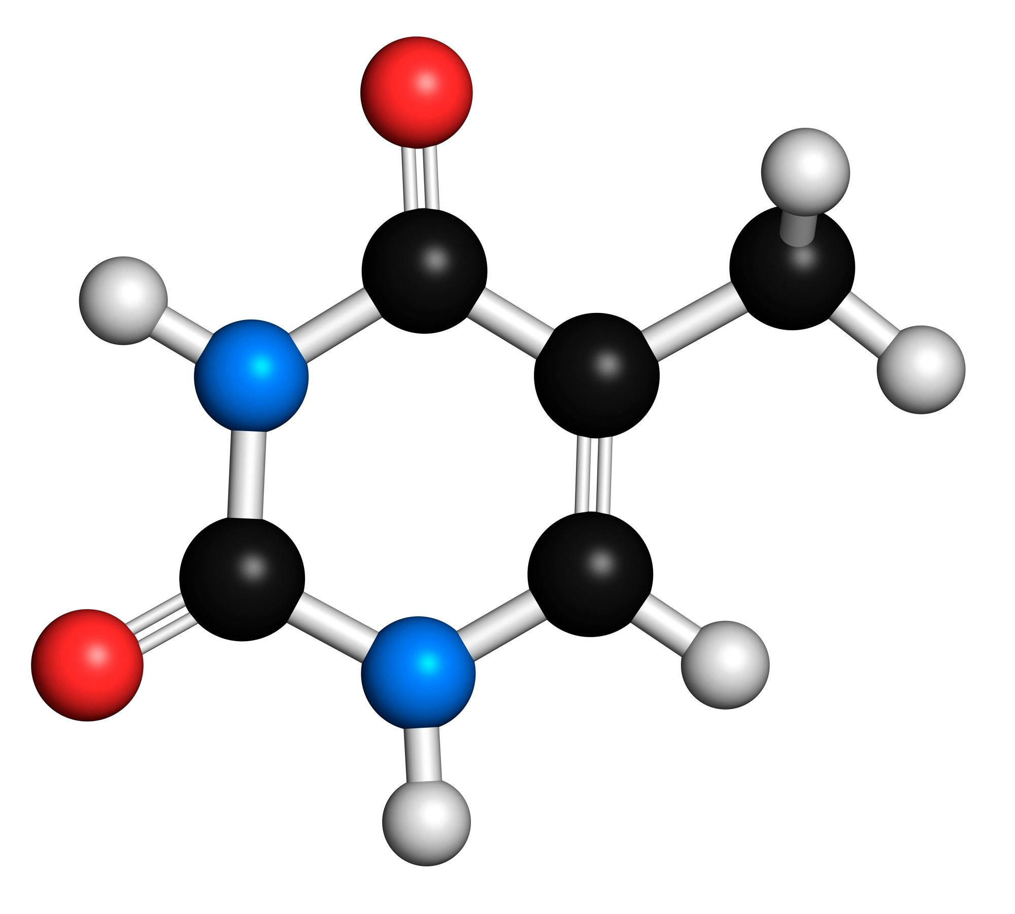 hight resolution of diagram of thymine