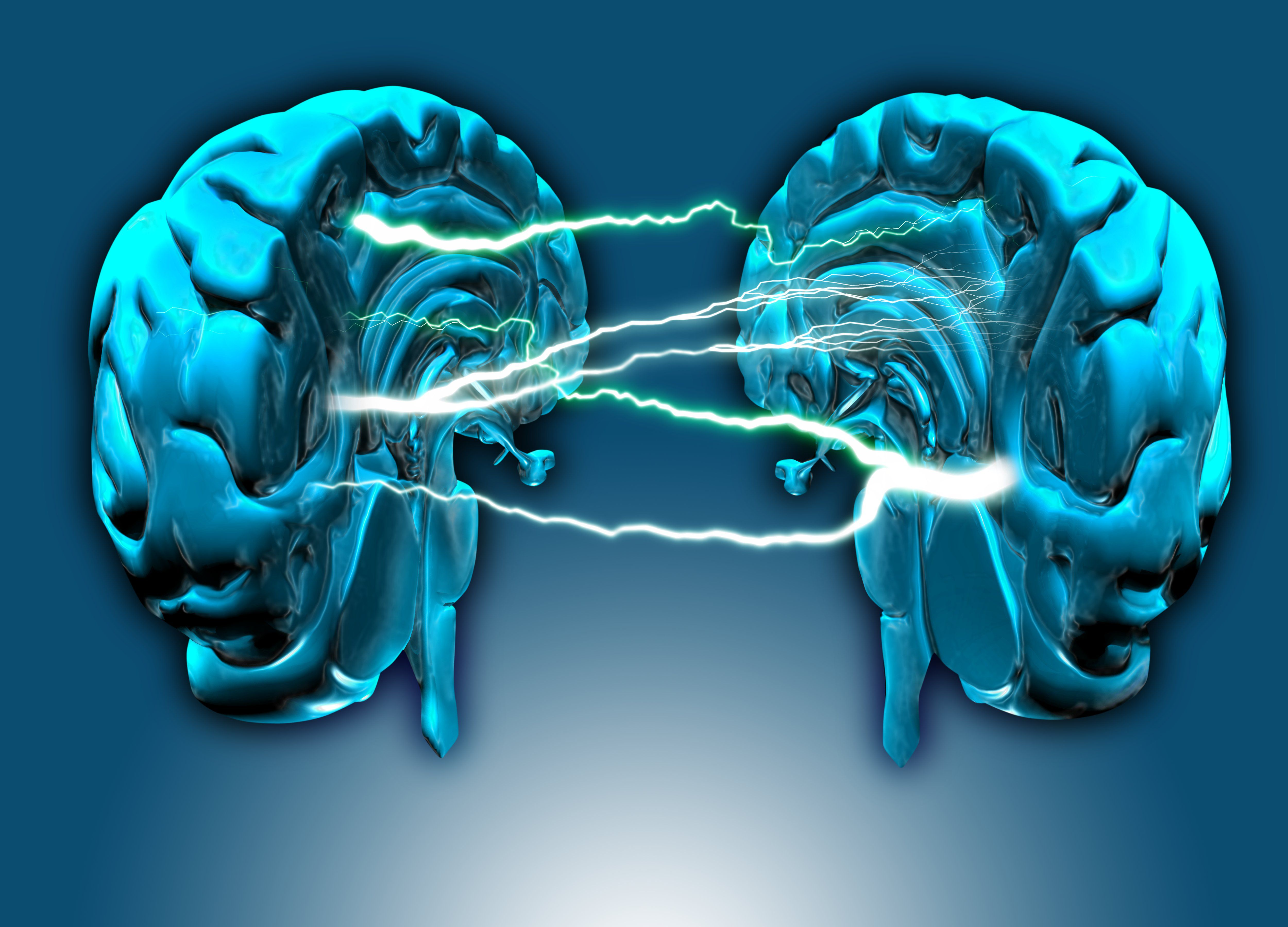 Left Brain Right Brain Quiz