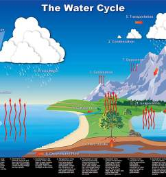 water cycle diagram [ 1185 x 858 Pixel ]