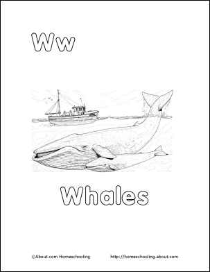 Whales Word Search, Vocabulary, Crossword and More