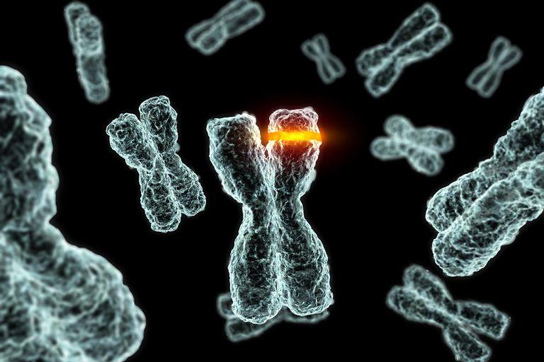 how chromosome mutations occur