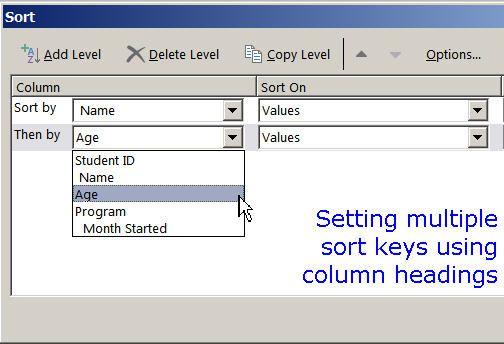 Sort Key Function in Microsoft Excel